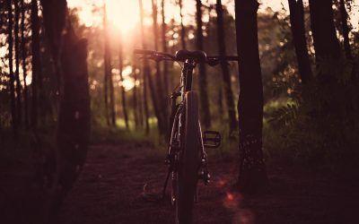 Prepara tus rutas por La Rioja en bicicleta